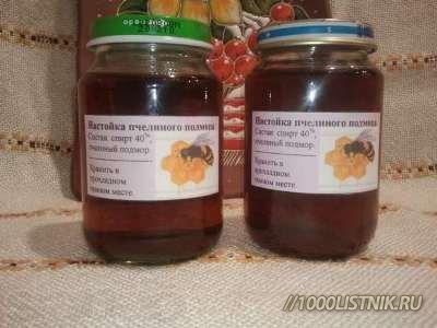 настойка пчелиного подмора