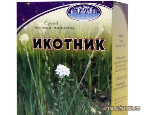 1391786012_ikotnik2