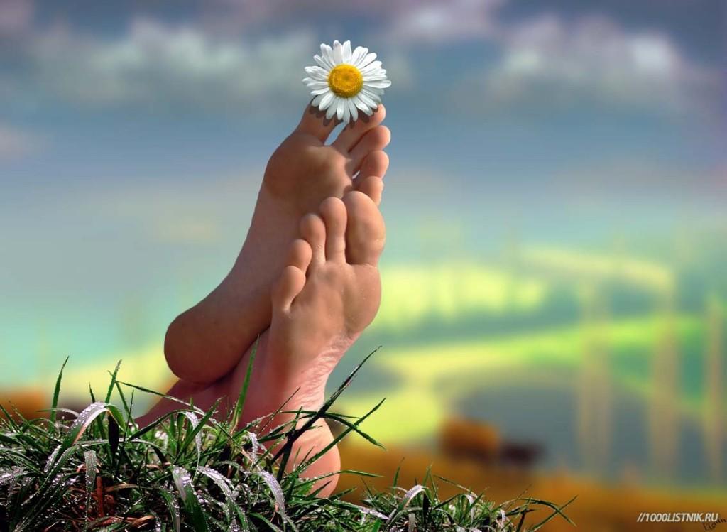 Здоровые ноги на поле с цветком