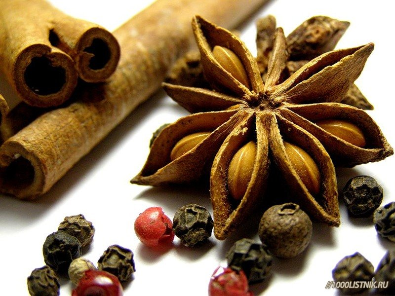 Плоды и семена альпинии