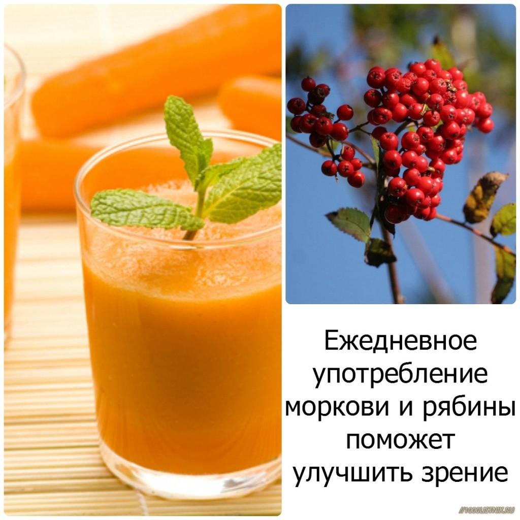 Морковь и рябина для улучшения зрения