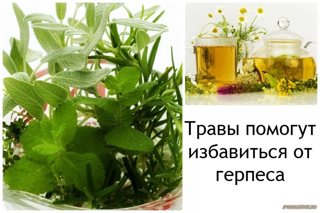 Травы помогут при герпесе