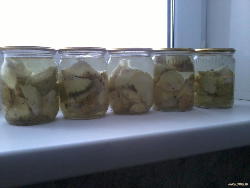 Нарезанные плоды маклюры для настойки