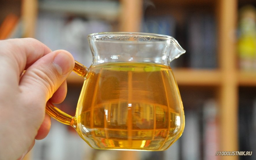 Целебный напиток из туи восточной