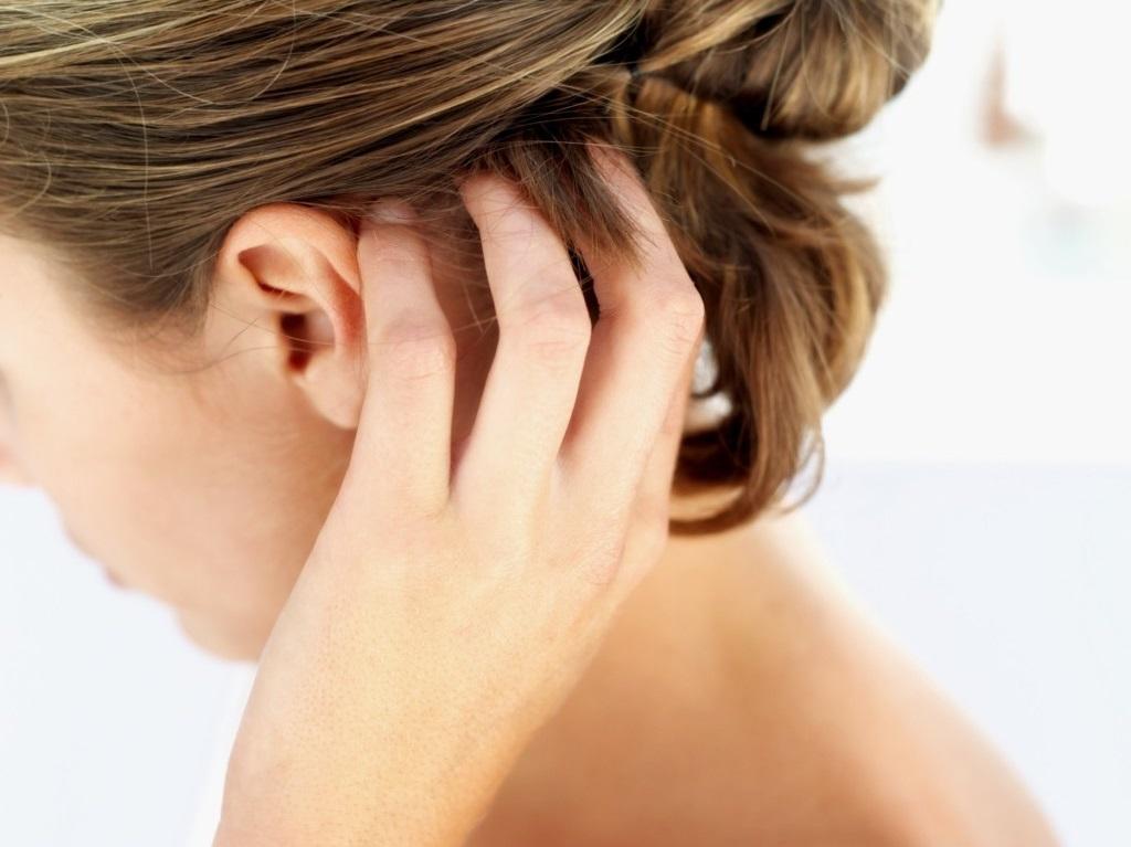 паразиты в коже головы человека