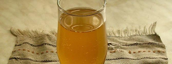 Старинное средство от болезней — чайный гриб