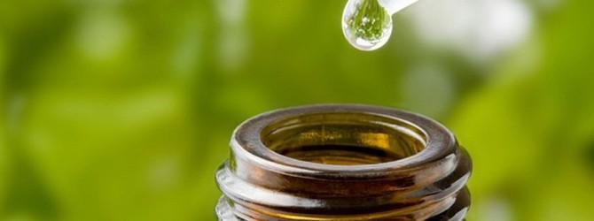 Эфирные масла — отличная защита от комаров