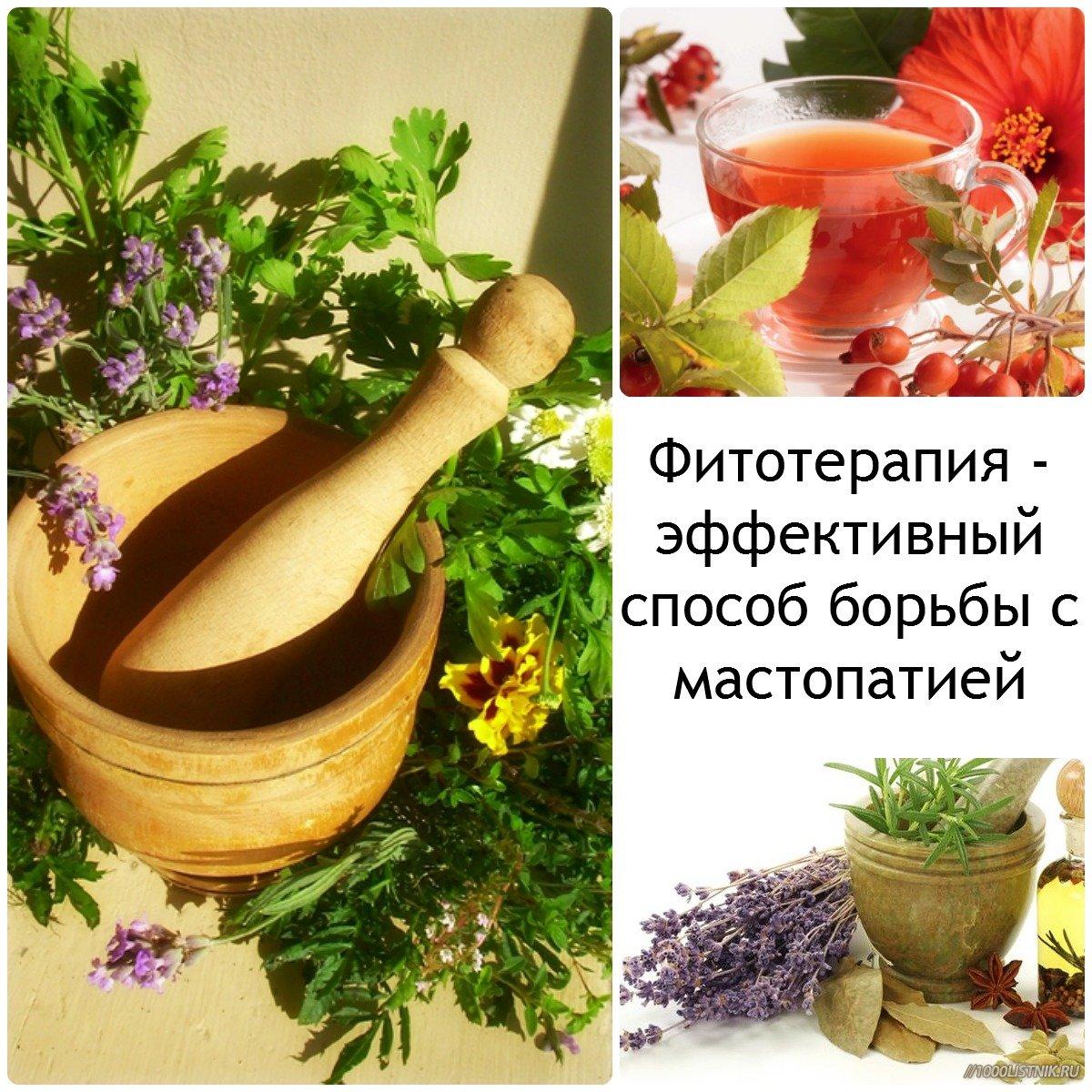 Лечение мастопатии при помощи народных средств