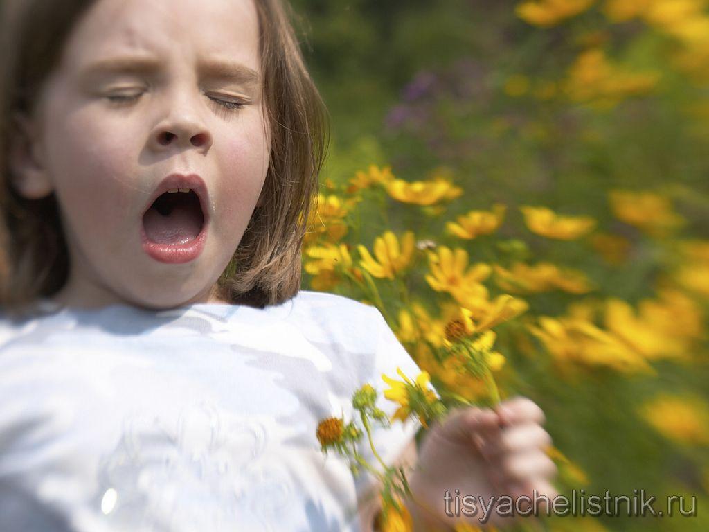 Народные средства лечения аллергии