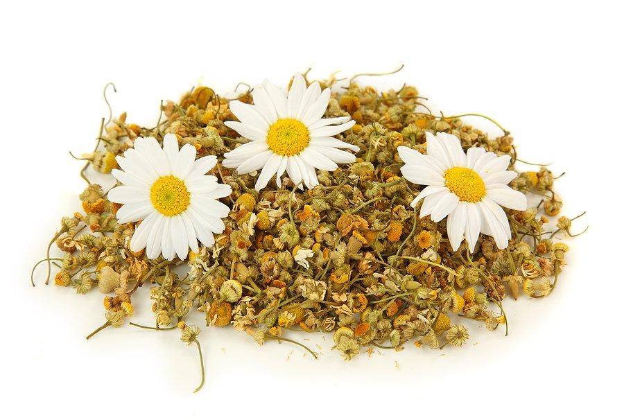 4 лекарственных растения при тревожности и беспокойстве