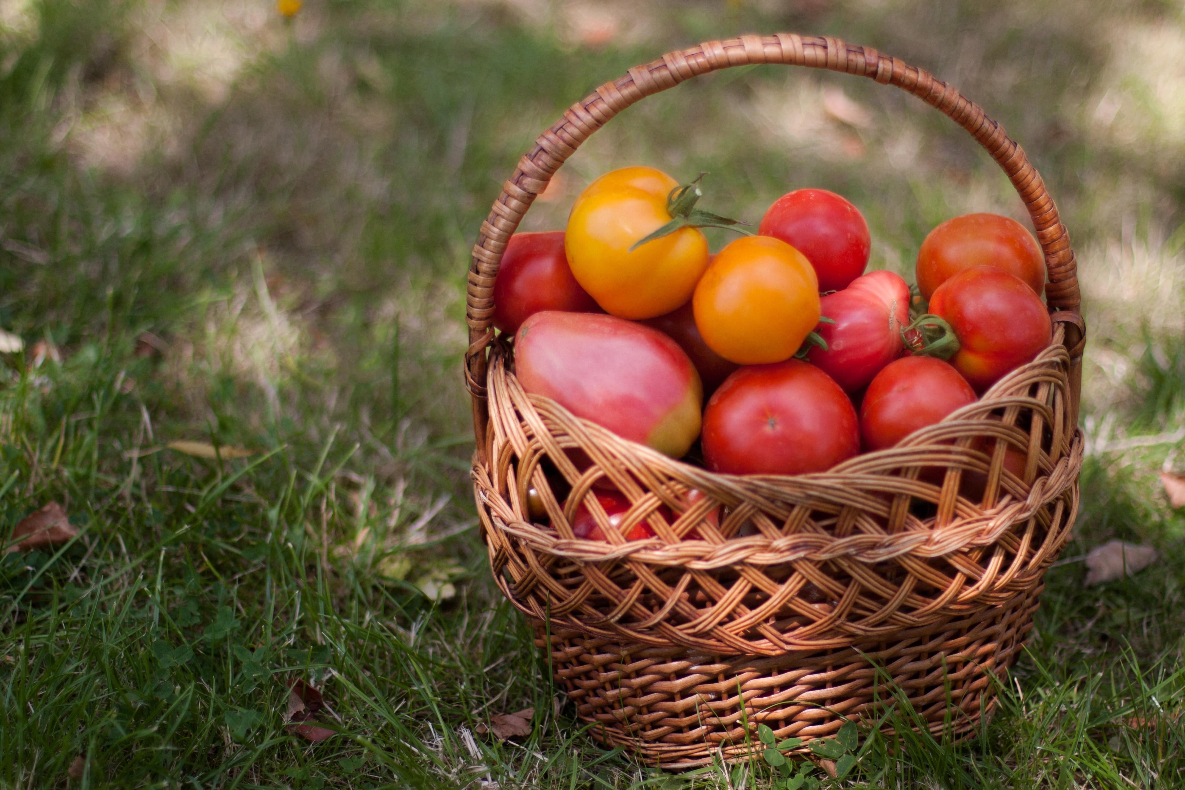 как понизить давление с помощью помидора