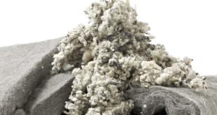 Овечья шерсть: целебные свойства