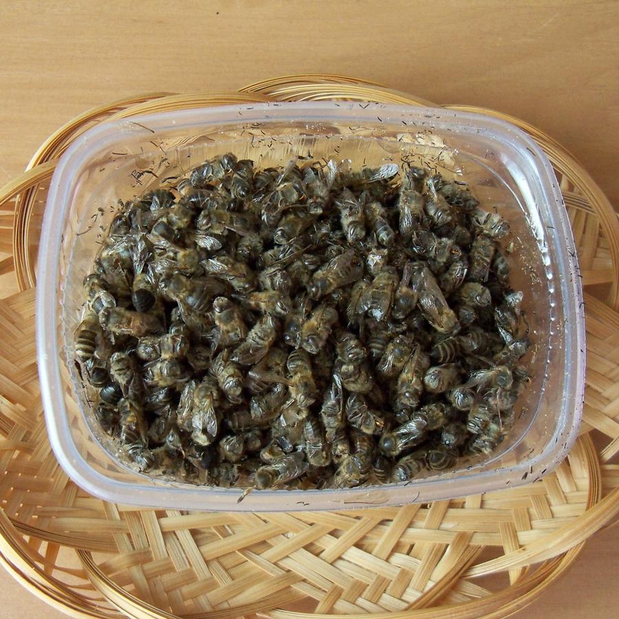 Настойка из пчелиного подмора