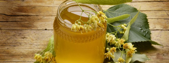 Польза кипрейного меда