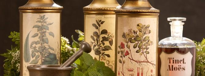 Лекарственные травы для увлажнения сухой кожи