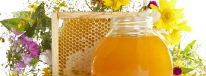 Мед в лечении заболеваний глаз