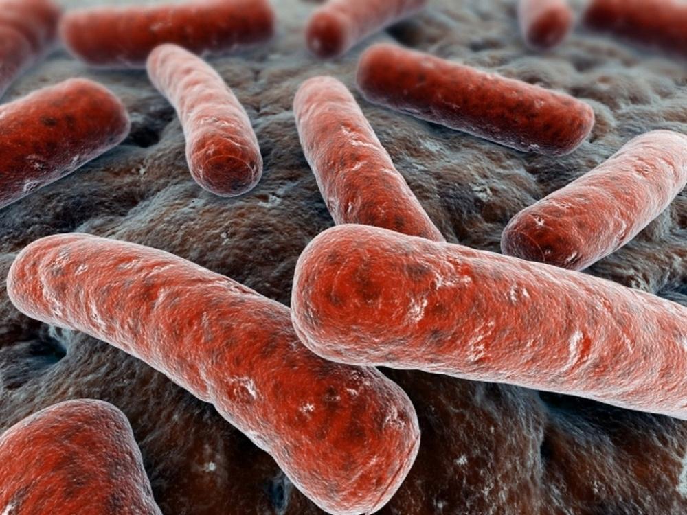 Туберкулез легких лечение народными средствами