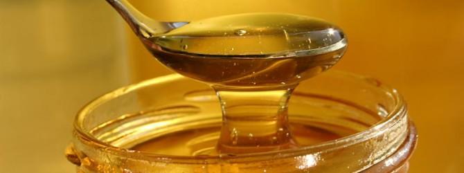 Туберкулез легких, бронхит, пневмония, кашель лечим медом