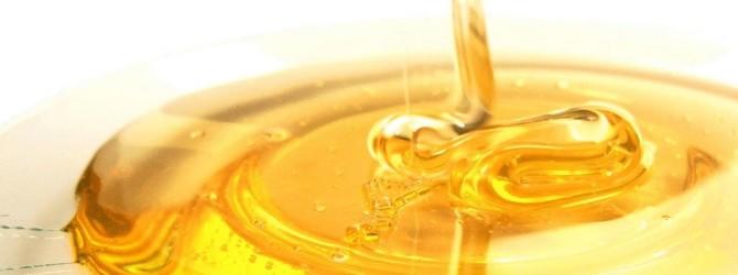 Печень и желчевыводящие протоки лечить медом