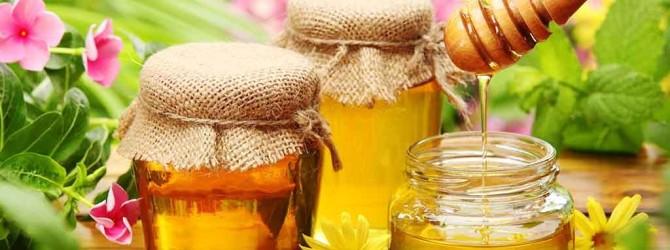 Отравления пчелиным медом