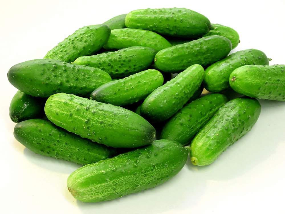 Огурцы для лечебного питания