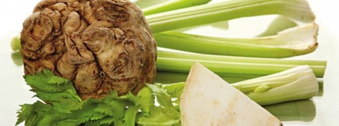 Сельдерей — здоровое питание