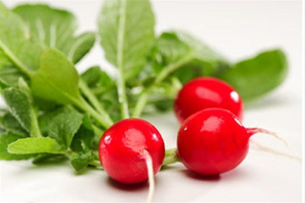 Редис для лечебного питания