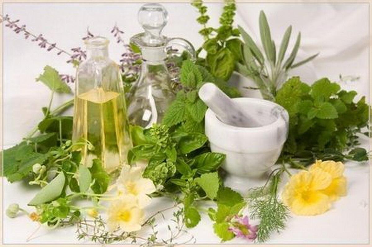 Целебные растения народной медицины