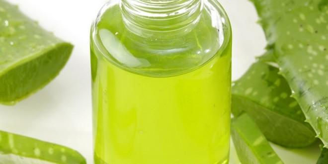 Как заготовить сок алоэ впрок в домашних условиях