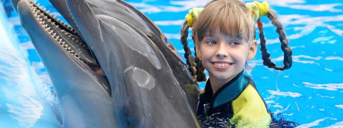 Дельфинотерапия или лечение голосами дельфинов
