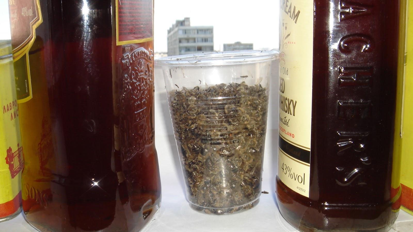 Использование водки в народной медицине