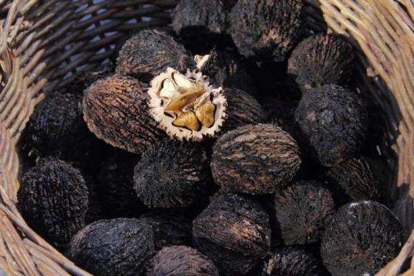 Чёрные орехи