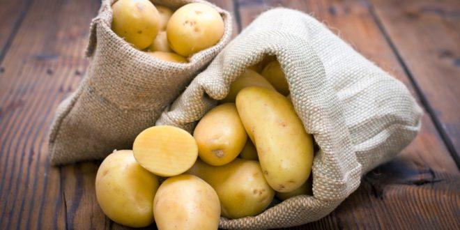 Лечение картофелем - путь к здоровью и молодости