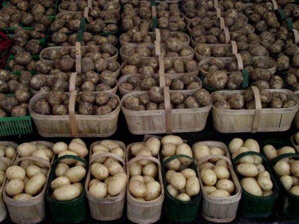 Картофель в корзинках