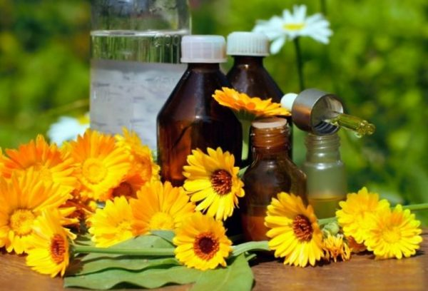 Бутылки с лосьоном и цветы календулы