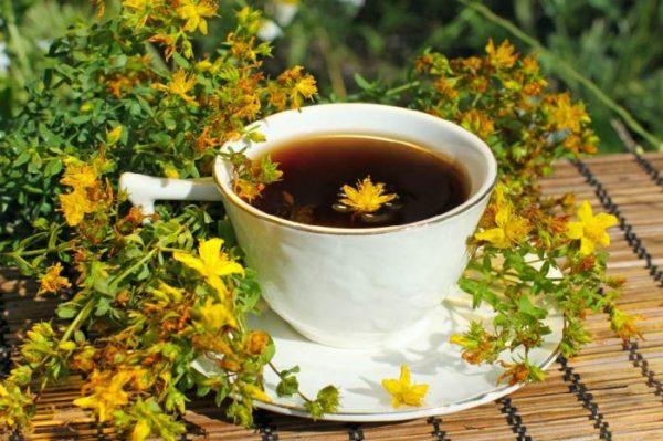 Чашка чая с зверобоем