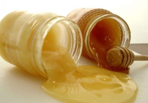 Разновидности мёда