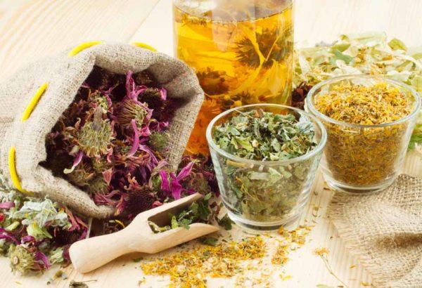 Лекарственные травы в различных ёмкостях