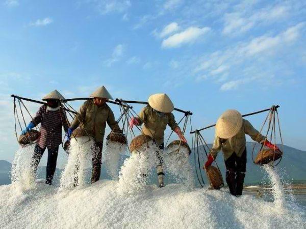Сбощики соли