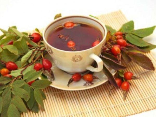 Ягоды, листья и отвар шиповника в чашке