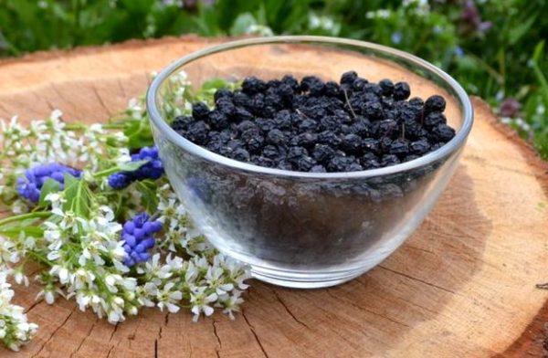 Ягоды и цветы черёмухи