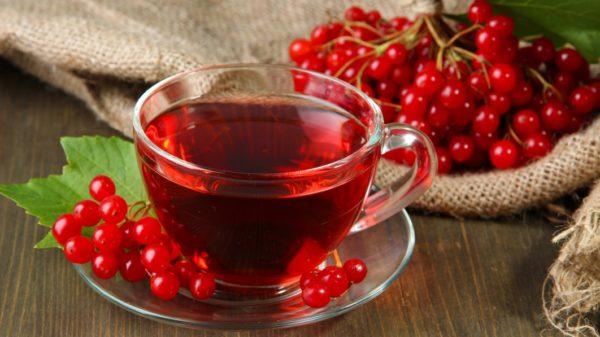 Калина и настой из её ягод в прозрачной чашке