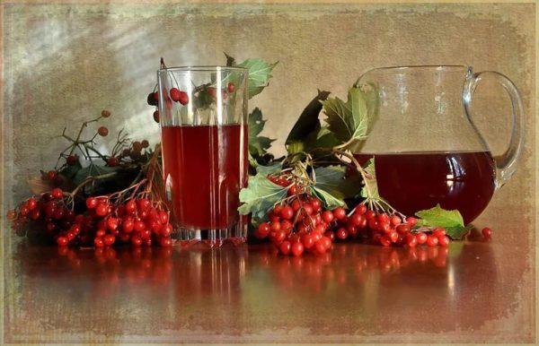 Кисти калины и настойка из её ягод в кувшине и стакане