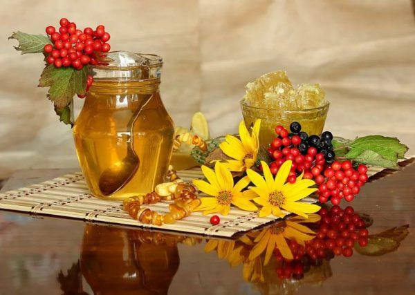 Кисти калины, кисть черноплодной рябины, цветы и мёд в банке и в стакане