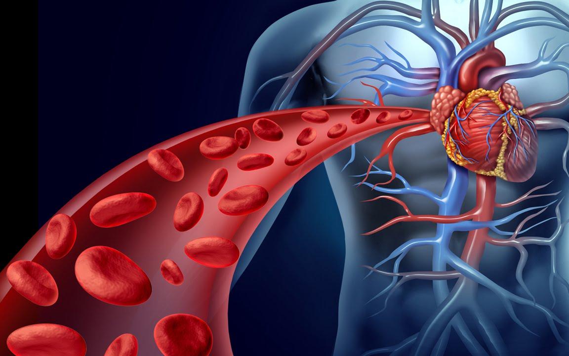 Как почистить кровь медикаментозно: список препаратов