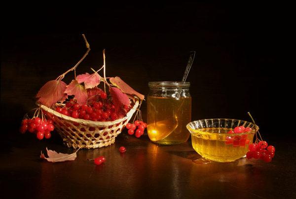Мёд в банке и тарелке, калина в вазе