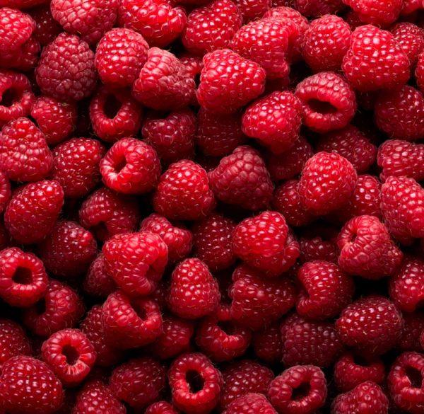 Много ягод малины крупным планом